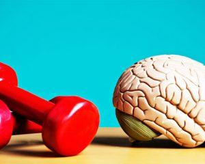 menjaga otak tetap sehat