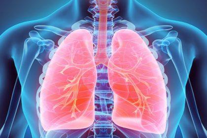 menjaga paru-paru tetap sehat